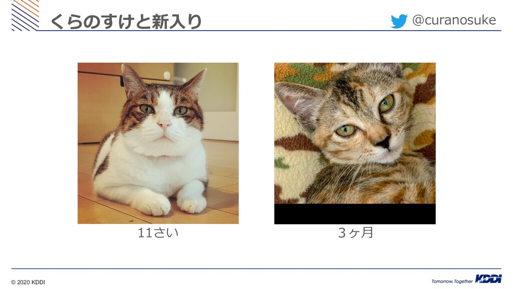 © 2020 KDDI @curanosuke くらのすけと新⼊り 11さい 3ヶ⽉