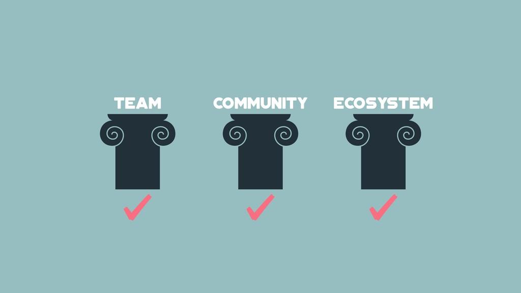 team COMMUNITY ecosystem