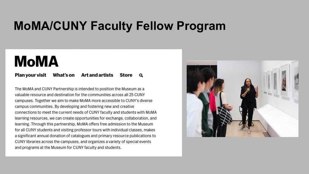 MoMA/CUNY Faculty Fellow Program