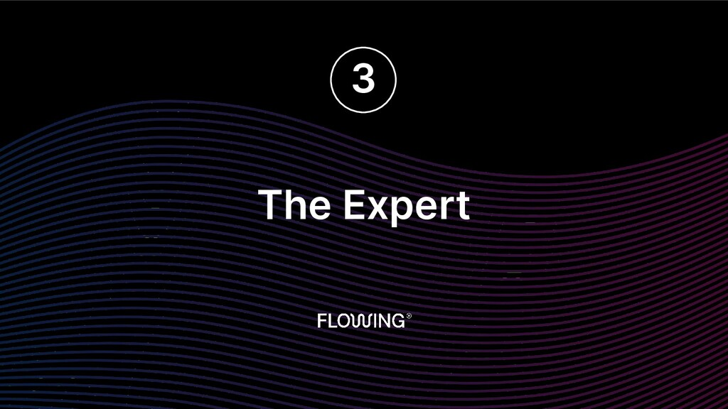 The Expert 3