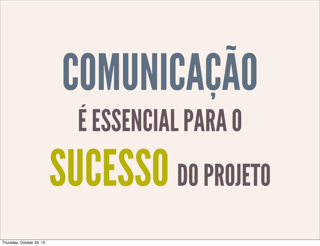 COMUNICAÇÃO É ESSENCIAL PARA O SUCESSO DO PROJE...