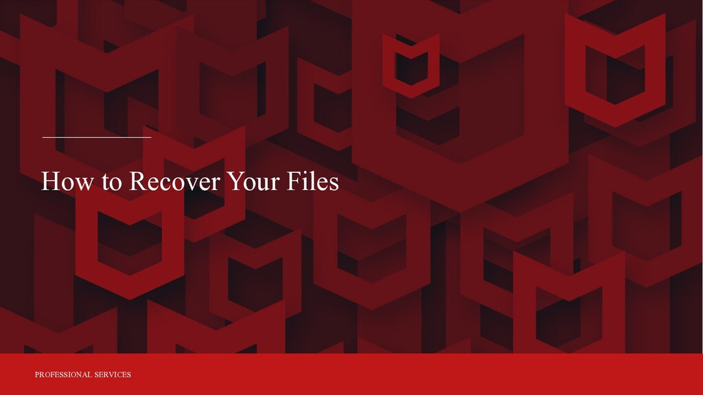 PROFESSIONAL SERVICES How to Recover Your Files