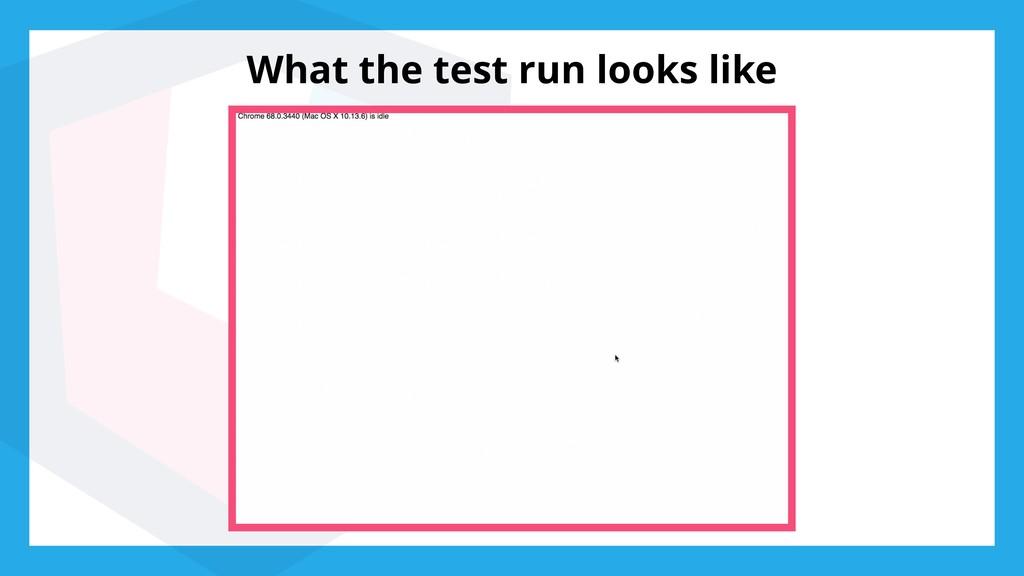 What the test run looks like