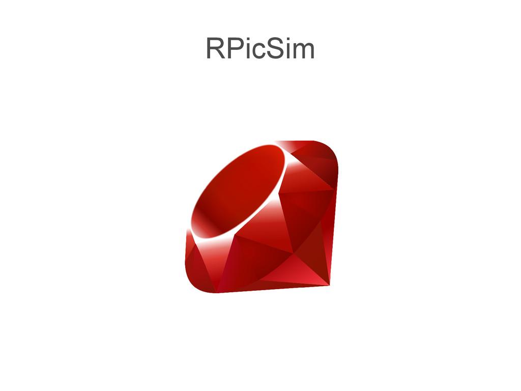 RPicSim
