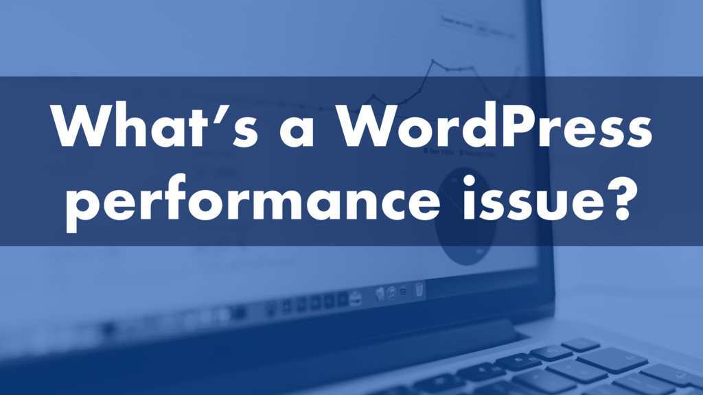 What's a WordPress performance issue?