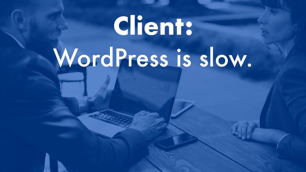 Client: WordPress is slow.