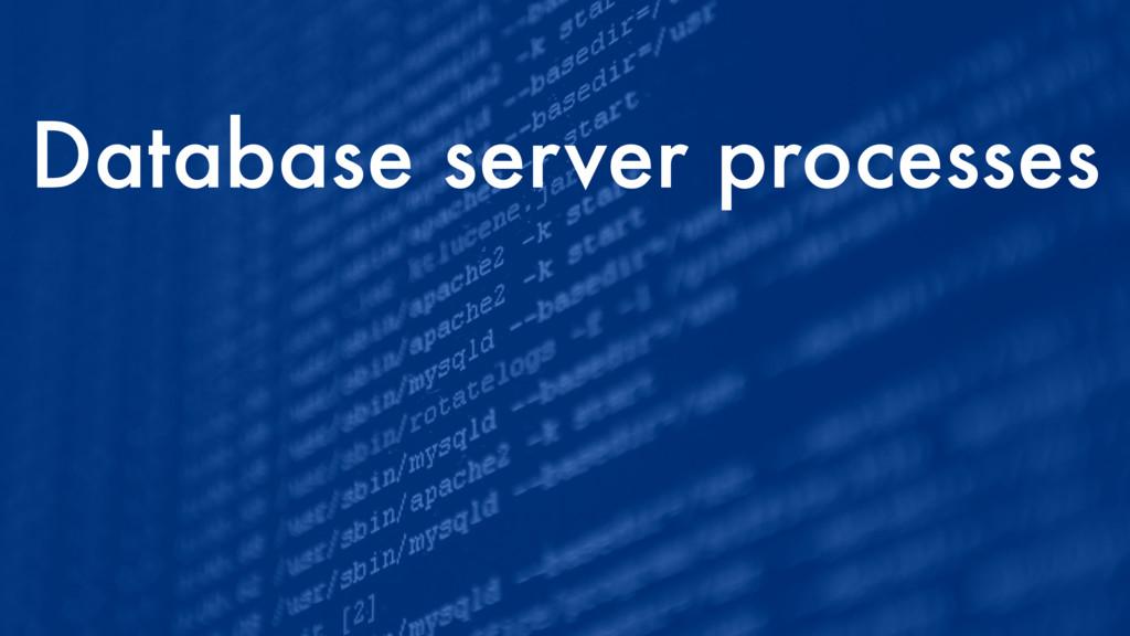 Database server processes
