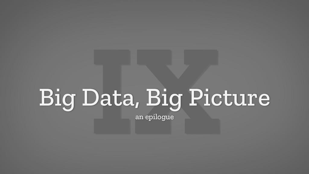 IX Big Data, Big Picture an epilogue