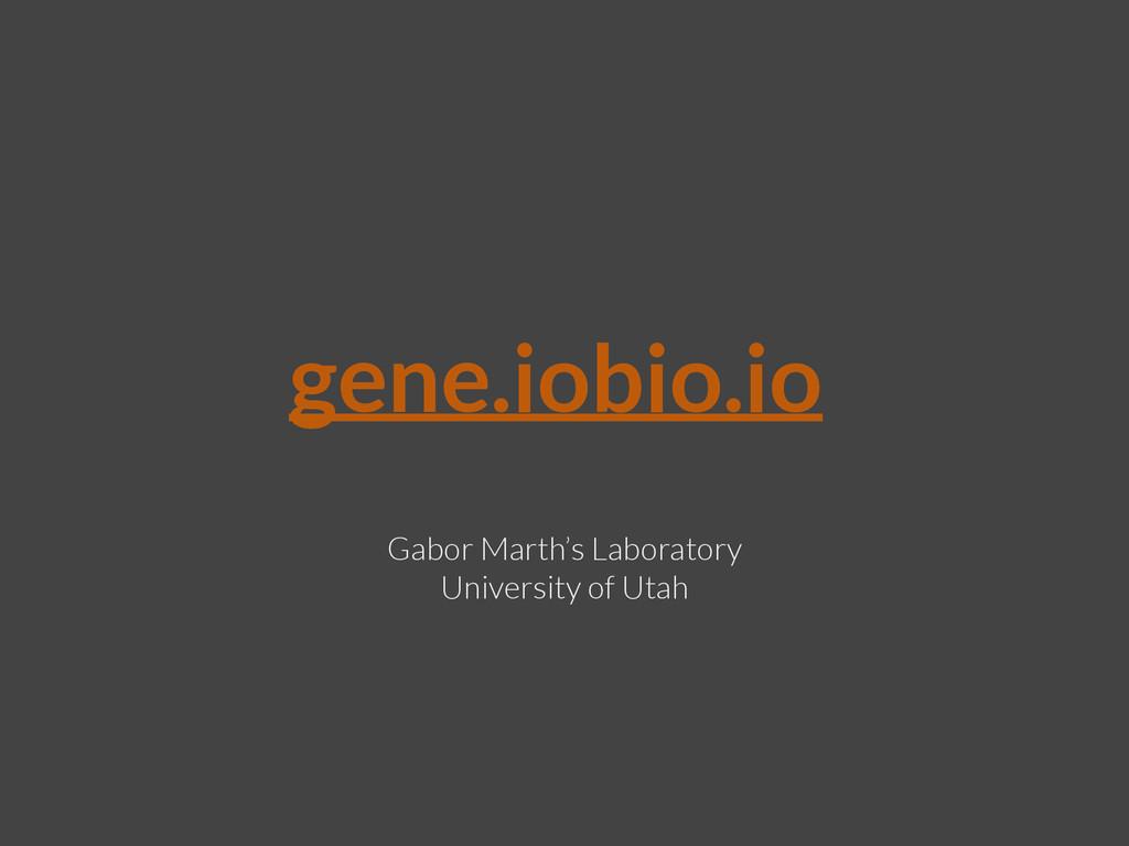gene.iobio.io Gabor Marth's Laboratory Universi...