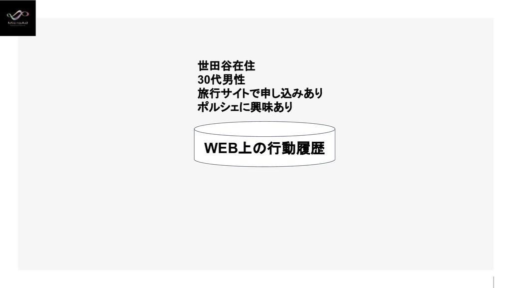 WEB上の行動履歴 世田谷在住 30代男性 旅行サイトで申し込みあり ポルシェに興味あり