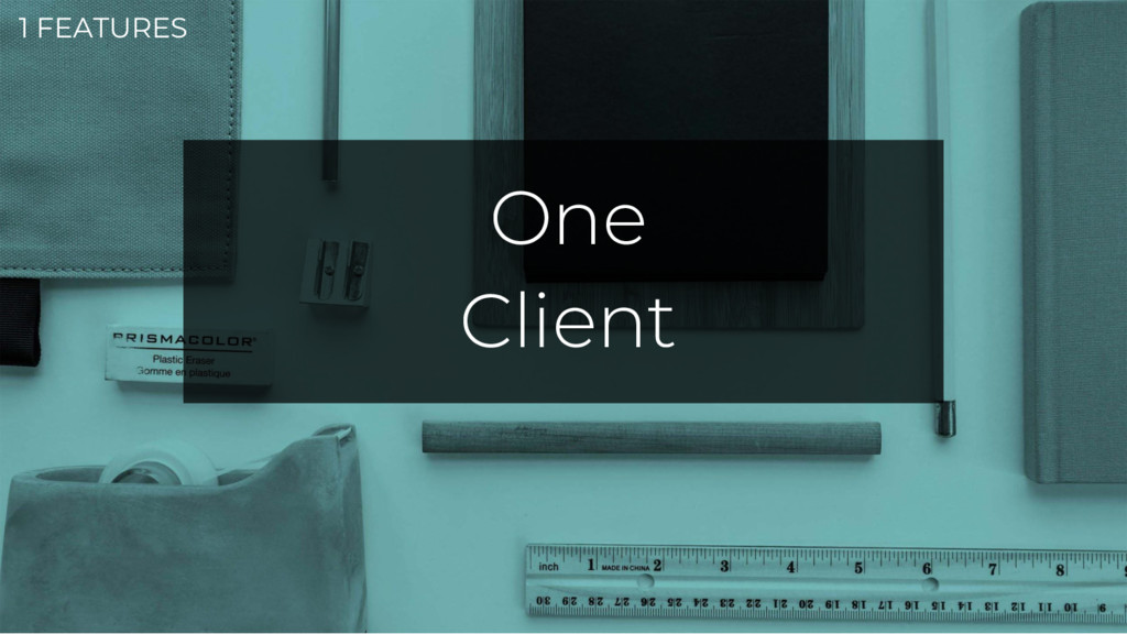 1 FEATURES One Client