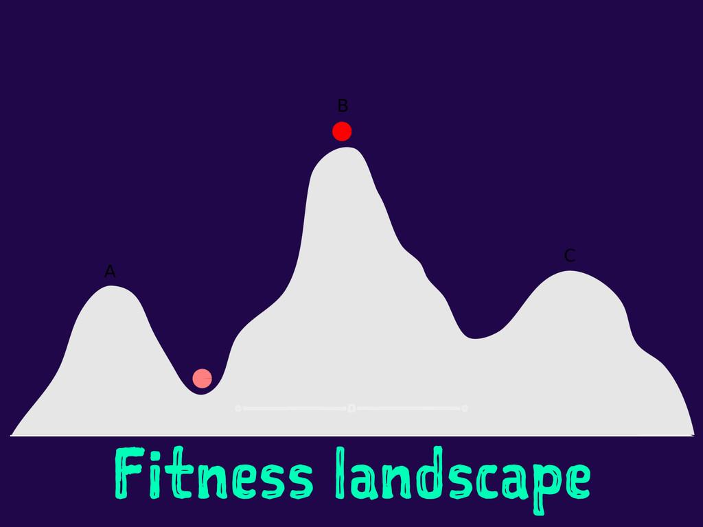 Fitness landscape
