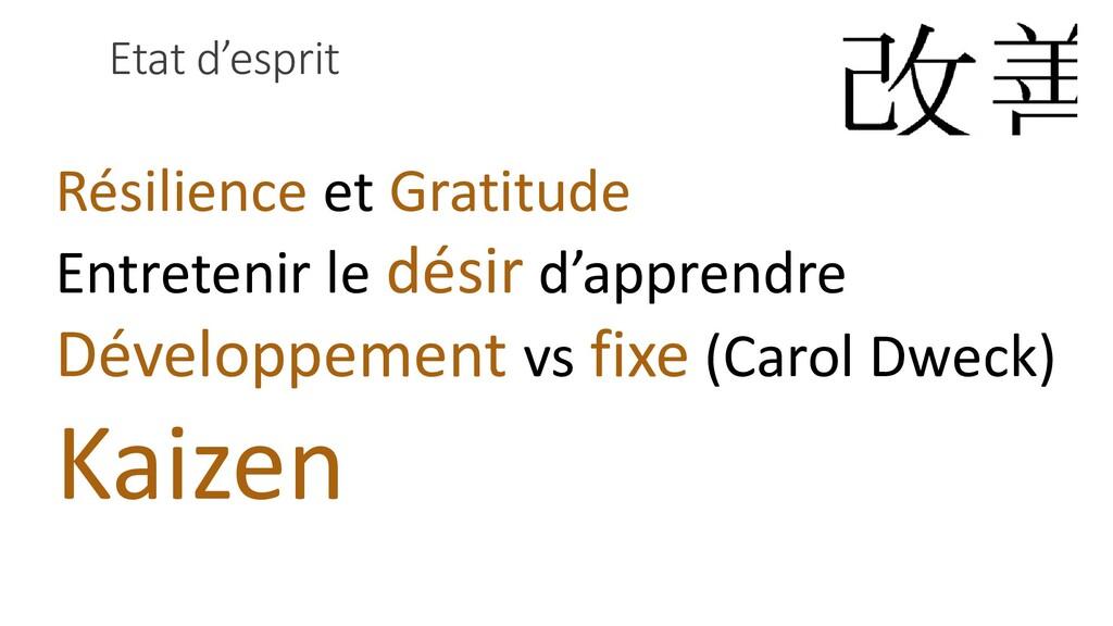 Etat d'esprit Résilience et Gratitude Entreteni...