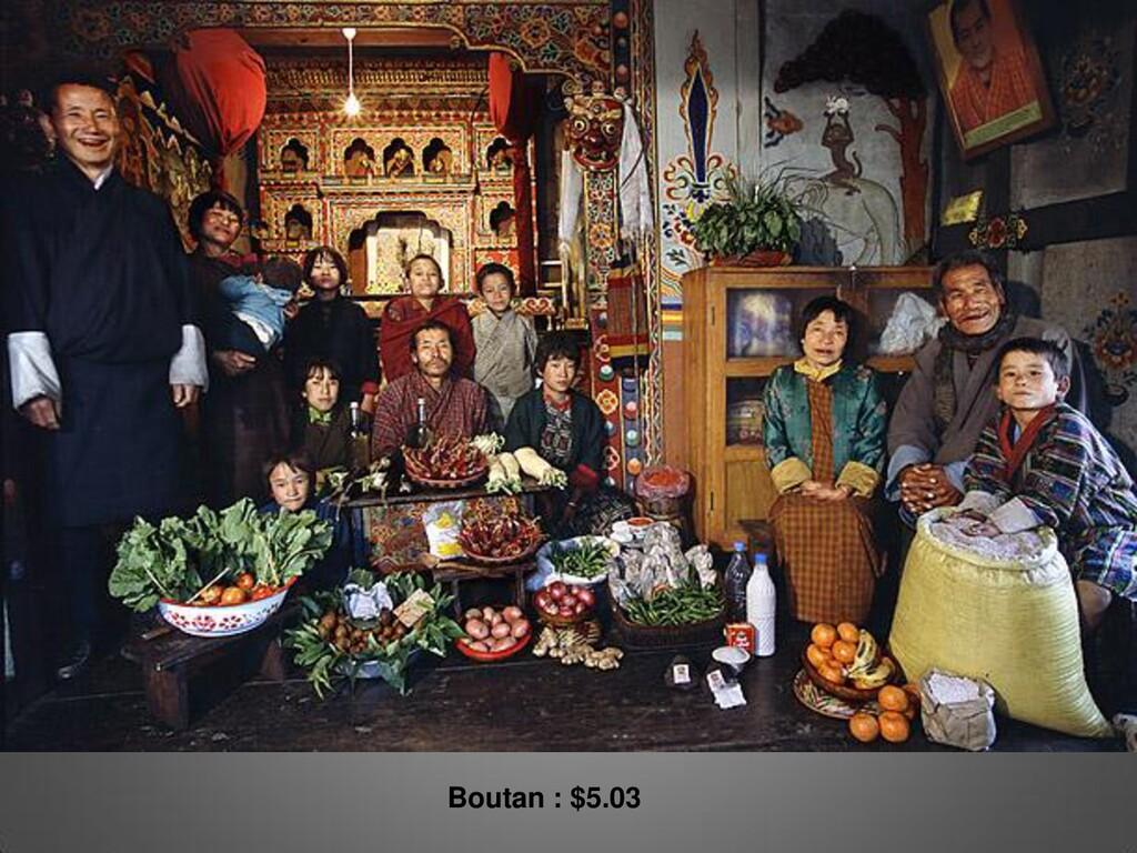 Boutan : $5.03