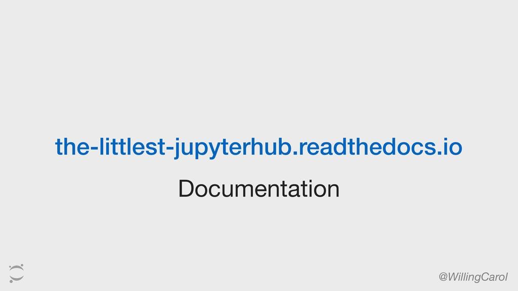 Documentation @WillingCarol the-littlest-jupyte...