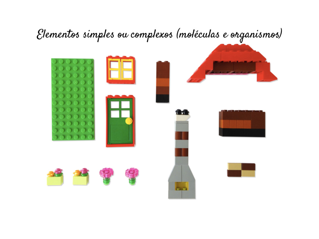 Elementos simples ou complexos (moléculas e org...