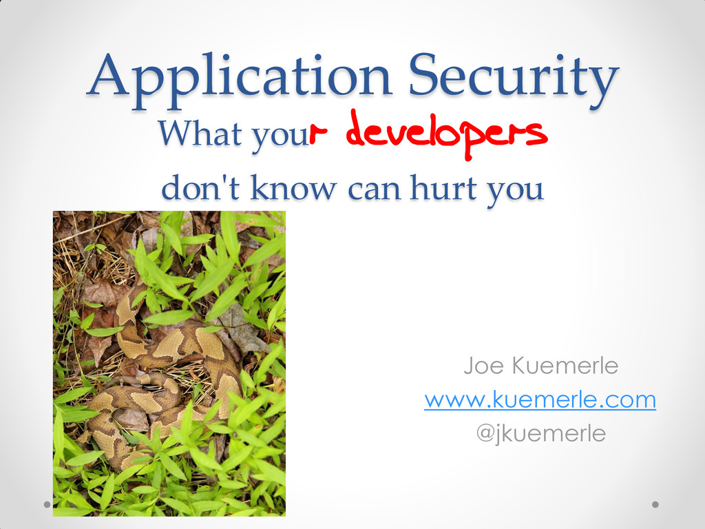 Application Security What your developers don't...