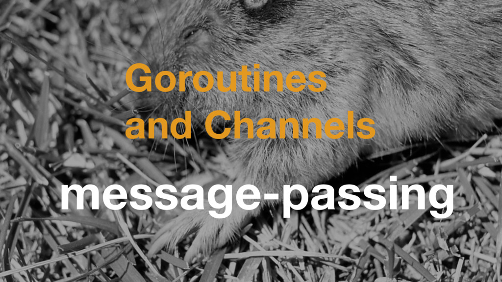 Goroutines and Channels message-passing