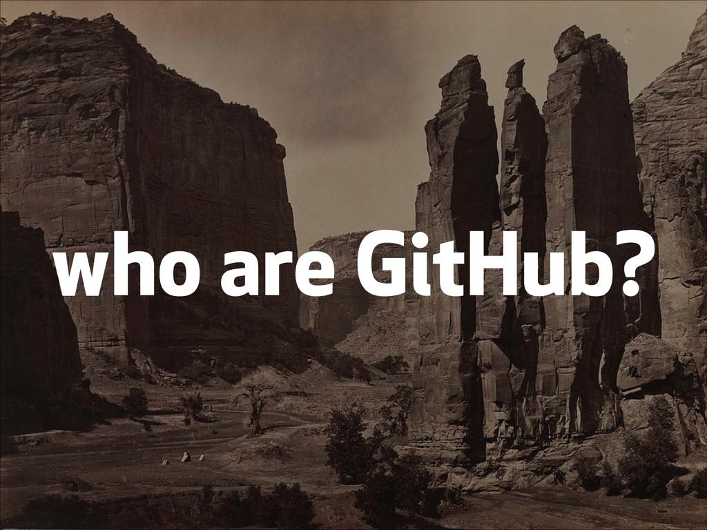 who are GitHub?
