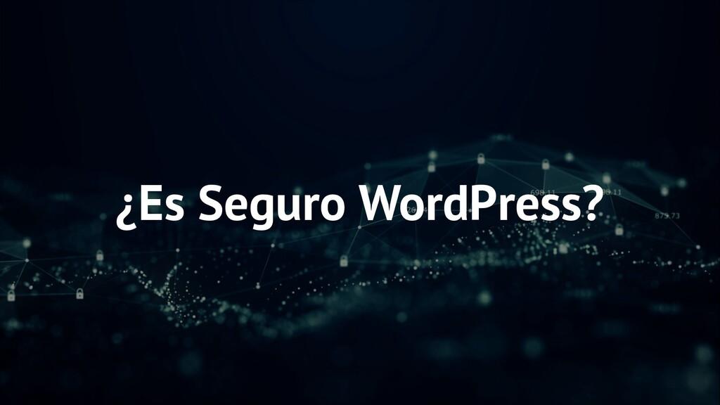 ¿Es Seguro WordPress?