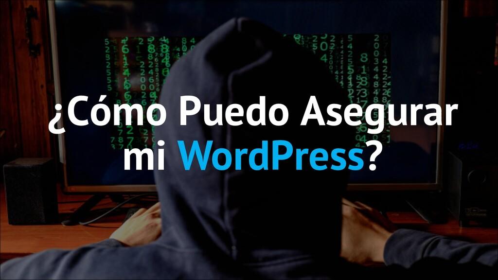 ¿Cómo Puedo Asegurar mi WordPress?