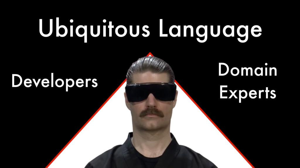 Ubiquitous Language Developers Domain Experts