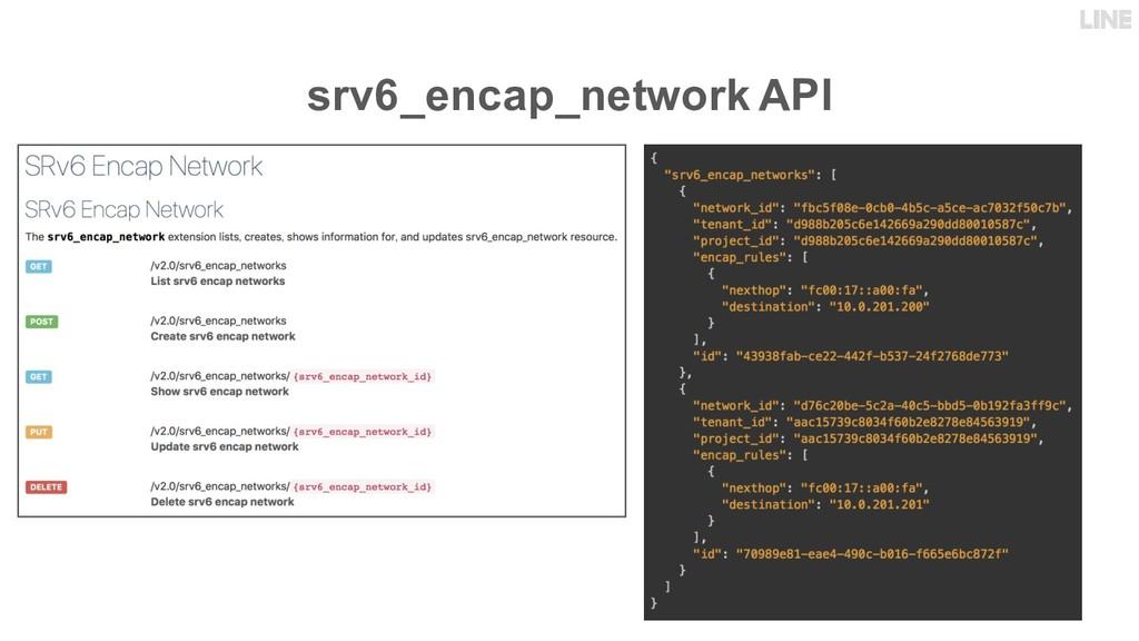 srv6_encap_network API