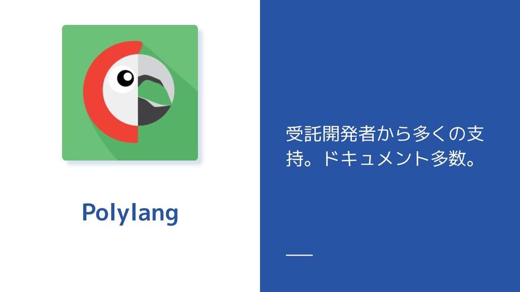 Polylang 受託開発者から多くの支 持。ドキュメント多数。