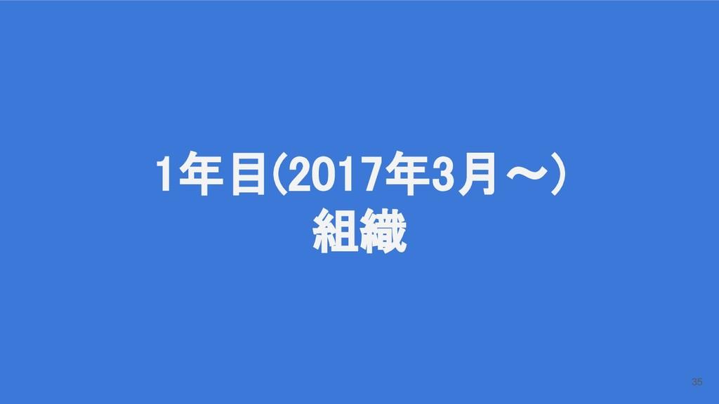 1年目(2017年3月〜) 組織 35