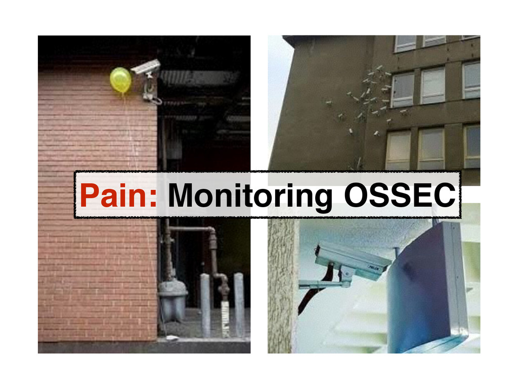 Pain: Monitoring OSSEC