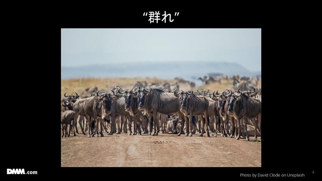 """""""群れ"""" Photo by David Clode on Unsplash 4"""