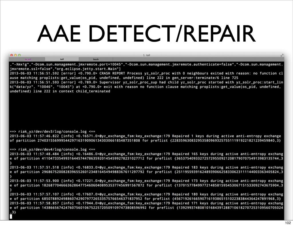 AAE DETECT/REPAIR 102