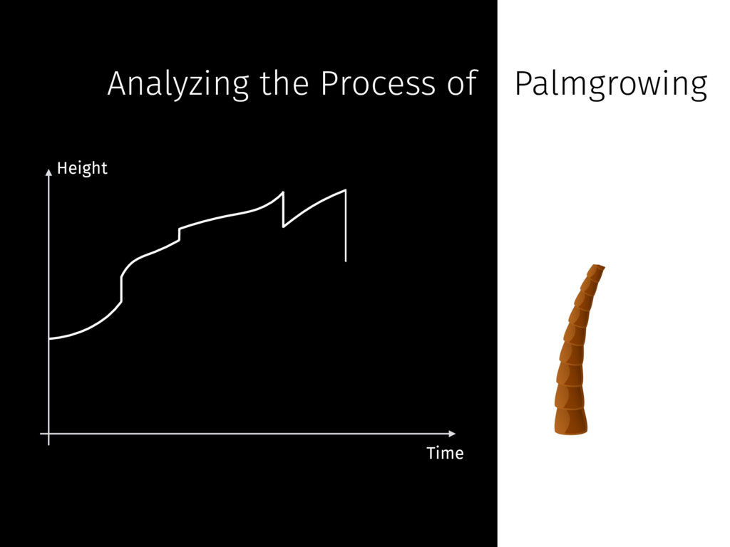 Analyzing the Process of Palmgrowing Height Time