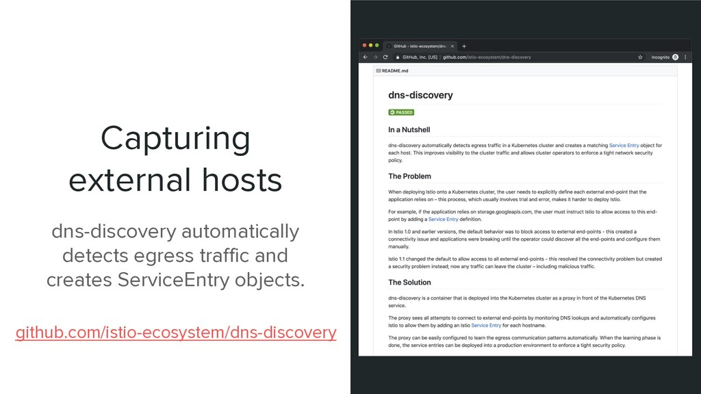 Capturing external hosts dns-discovery automati...