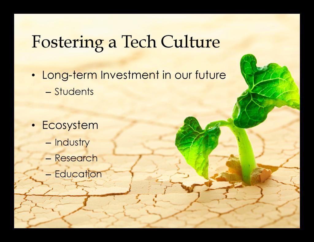Fostering a Tech Culture • Long-term Investmen...