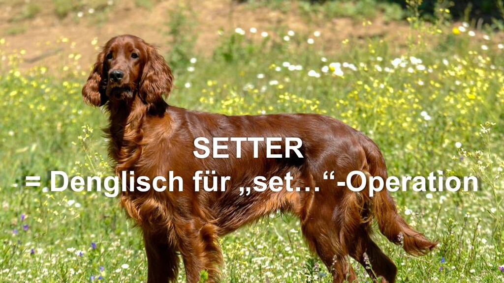 "SETTER = Denglisch für ""set…""-Operation"