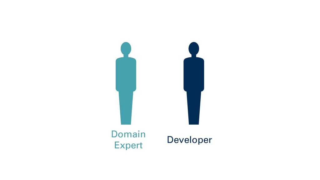 Domain Expert Developer
