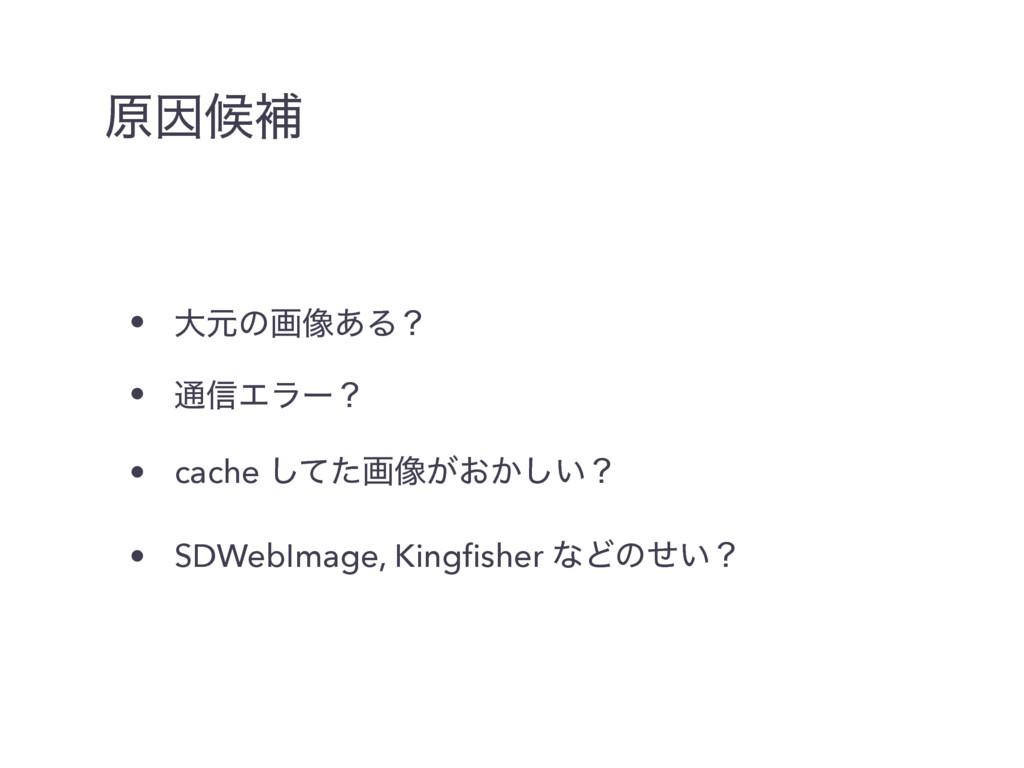 ݪҼީิ • େݩͷը૾͋Δʁ • ௨৴Τϥʔʁ • cache ͯͨ͠ը૾͕͓͔͍͠ʁ • ...