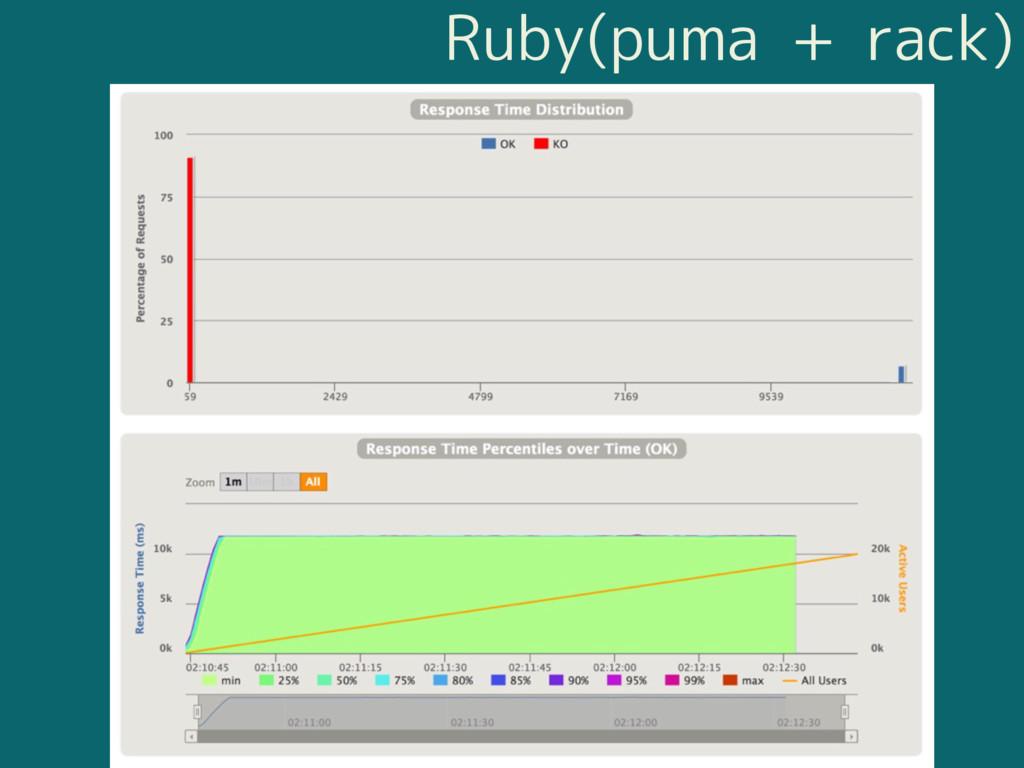 Ruby(puma + rack)