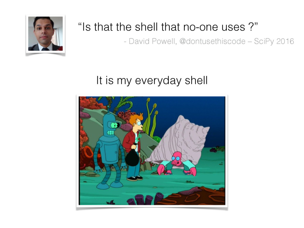 """""""Is that the shell that no-one uses ?"""" - David ..."""