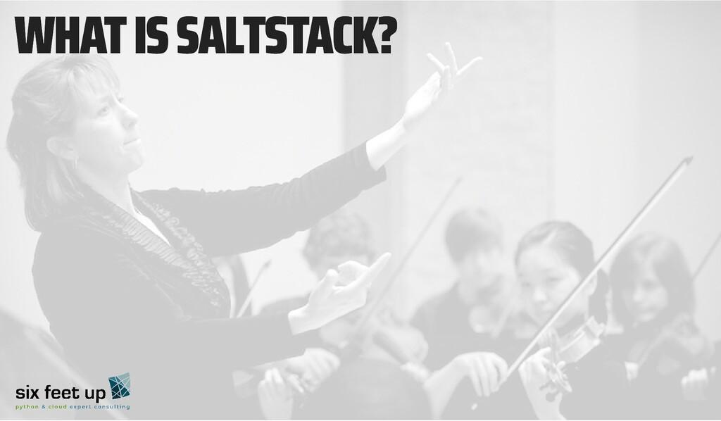 WHAT IS SALTSTACK? WHAT IS SALTSTACK?
