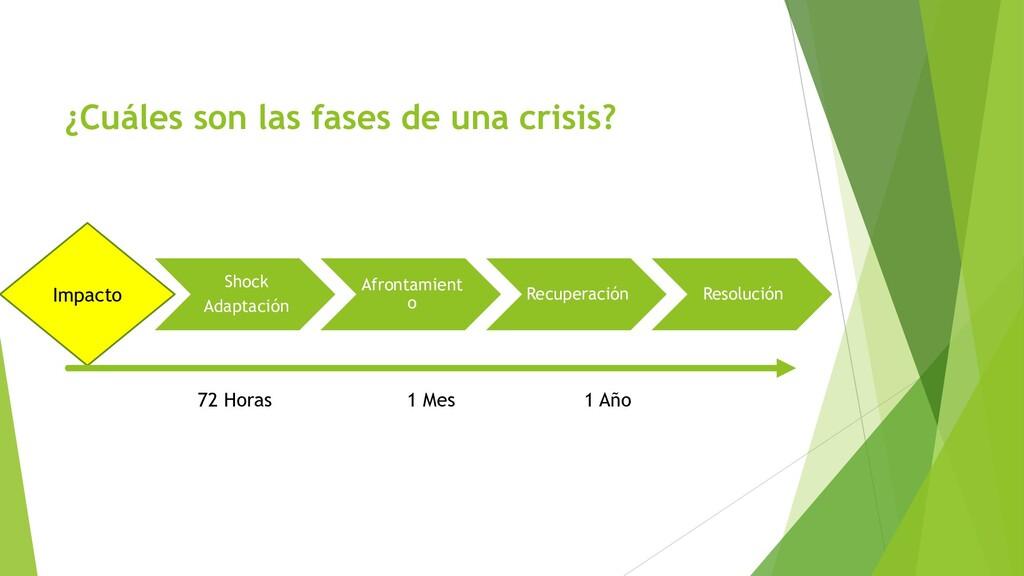 ¿Cuáles son las fases de una crisis? Shock Adap...