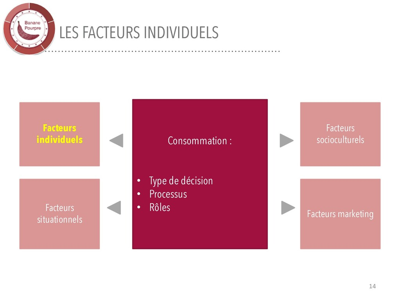 LES FACTEURS INDIVIDUELS 14 Consommation : • Ty...
