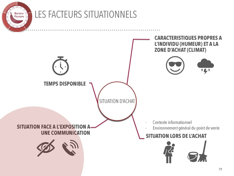LES FACTEURS SITUATIONNELS CARACTERISTIQUES PRO...