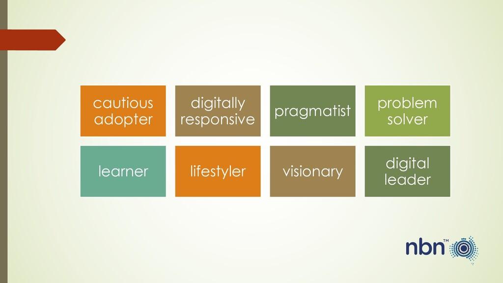 cautious adopter digitally responsive pragmatis...
