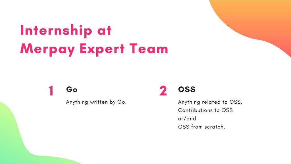 Internship at Merpay Expert Team 1 Go Anything ...