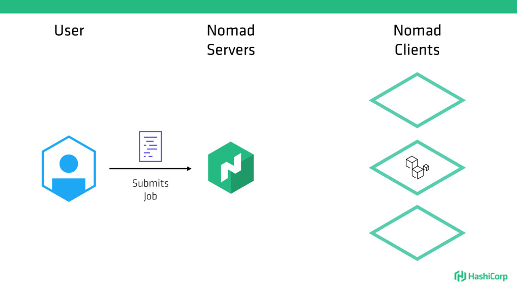 User Nomad Servers Submits Job Nomad Clients