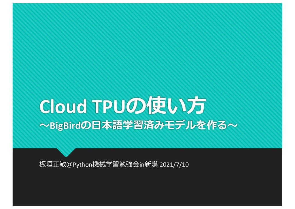 Cloud TPUの使い⽅ 〜BigBirdの⽇本語学習済みモデルを作る〜 板垣正敏@Pyth...