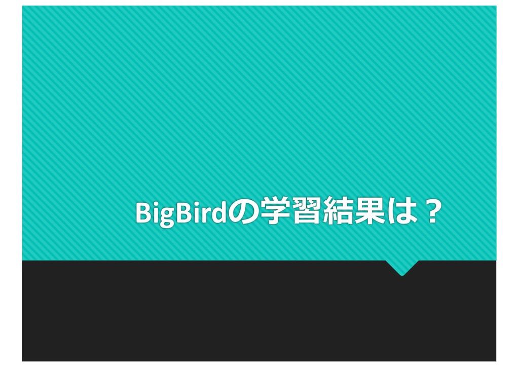 BigBirdの学習結果は︖