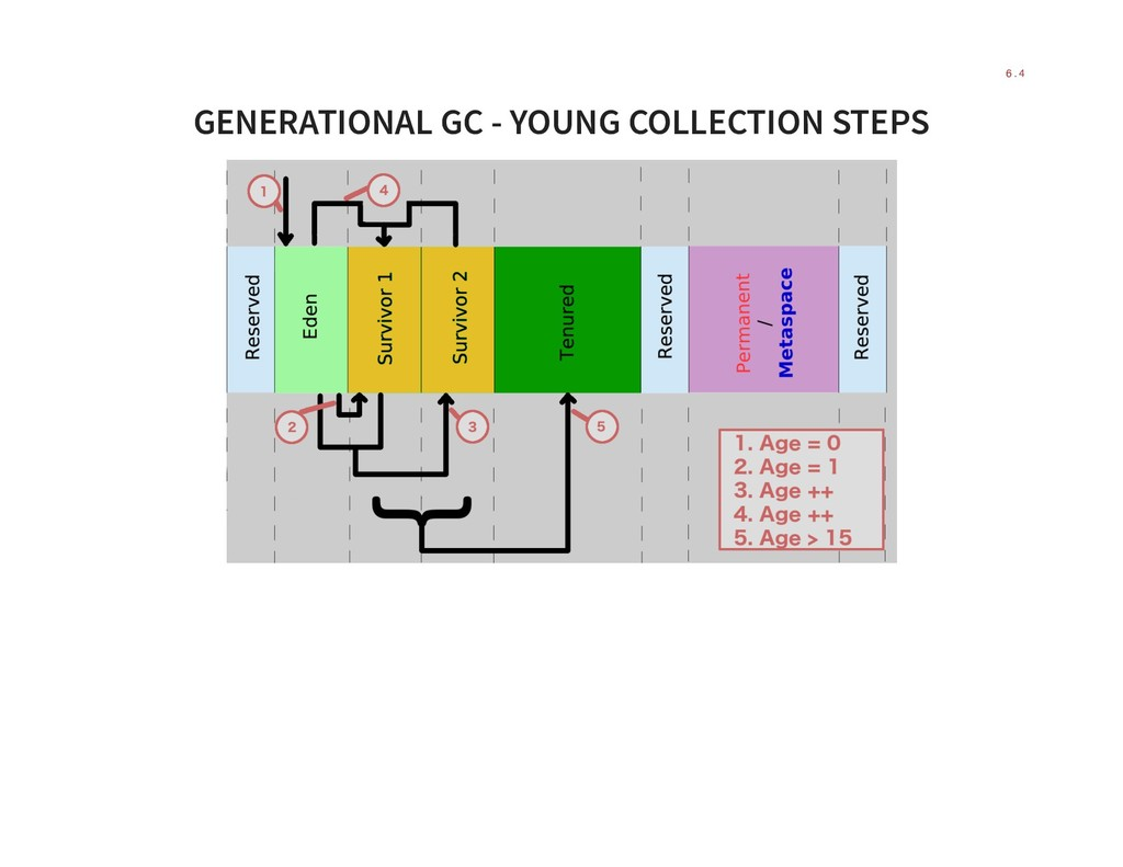 GENERATIONAL GC - YOUNG COLLECTION STEPS 6 . 4